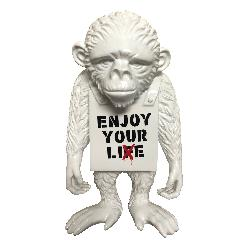 Enjoy Your Lie - Street Monkey