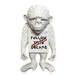 Follow Your Dreams - Street Monkey